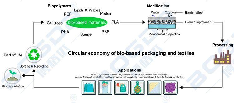 Biodegradable PLA Environmental Packaging Sheet Extrusion Equipment